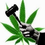 Portugal's Success Story Decriminalizing All Drugs