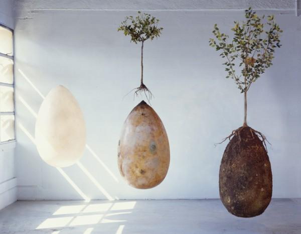 capsula-mundi.jpg.662x0_q100_crop-scale