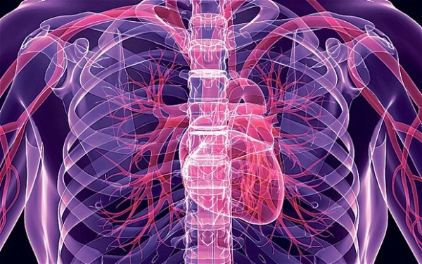 Nanotechnology could allow tiny drones to seek and repair blocked arteries  Photo: ALAMY
