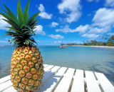 Study Finds Pineapple Enzymes More Effective Than Chemotherapy