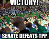 Senate votes against fast-tracking TPP