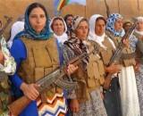 Kurdish Women's Radical Self-Defense: Armed and Political