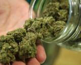 Recreational Marijuana Bill Introduced in New York