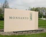 Monsanto to be Finally Put on Trial for Crimes Against Humanity