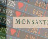 Monsanto Kicks Off New Year With 1000 Job Cuts
