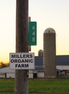 Millers-Sign-IMG_7105-copy-220x300