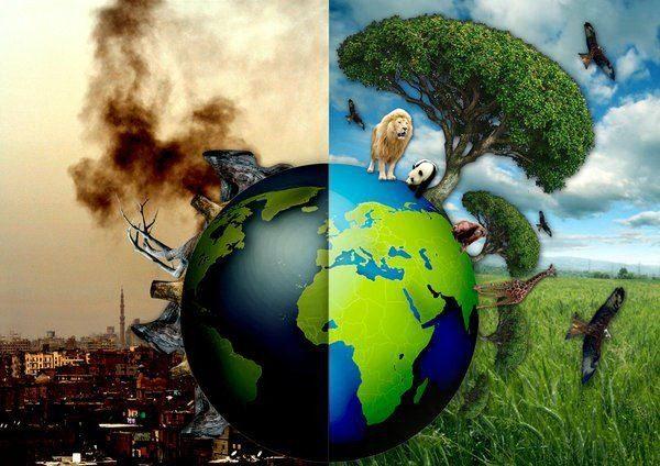 unsustainable civilization