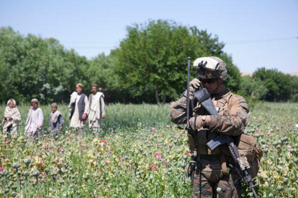 Photos-of-U.S.-and-Afghan-Troops-Patrolling-Poppy-Fields-June-2012-05