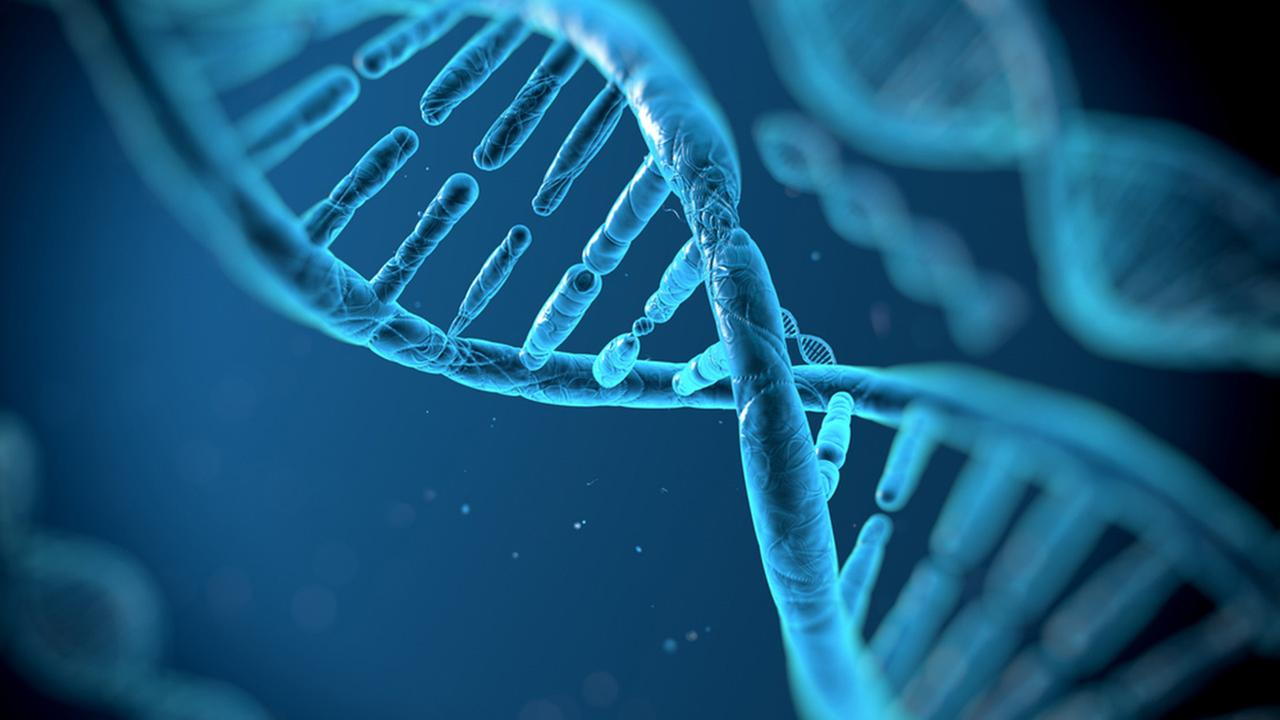 DNA Space