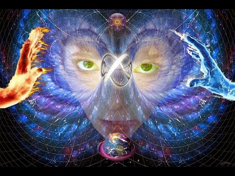 New Scientific Breakthrough Proving Consciousness