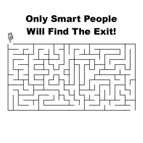 exit-in-the-maze