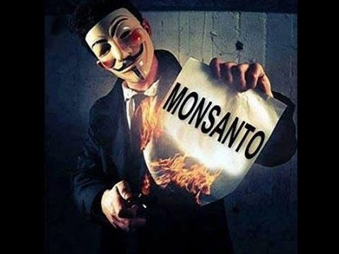 Why Are People Protesting GMO's and Monsanto