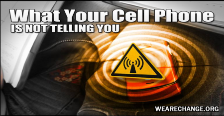 What Your Cell Phone Is Not Telling You