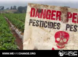 Global Assault Part 1: Monsanto's Roundup