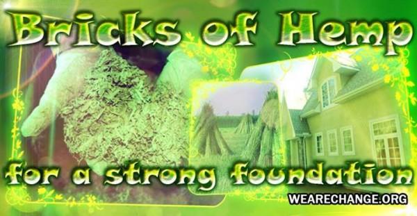 Bricks of Hemp2