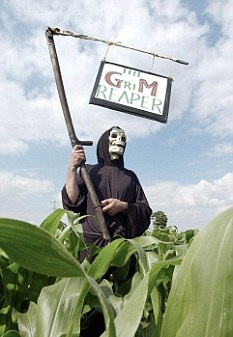 "American Farmers Abandoning Genetically Modified Seeds: ""Non-GMO Crops are more Productive and Profitable"""