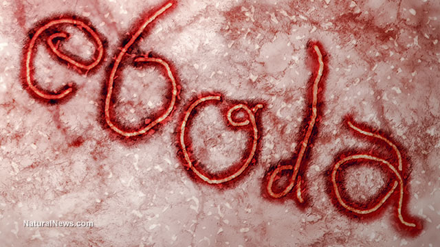 The five biggest lies about Ebola being pushed by government and mass media
