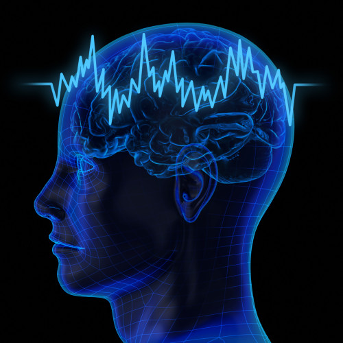 Mind control: the Pentagon mission to program the brain