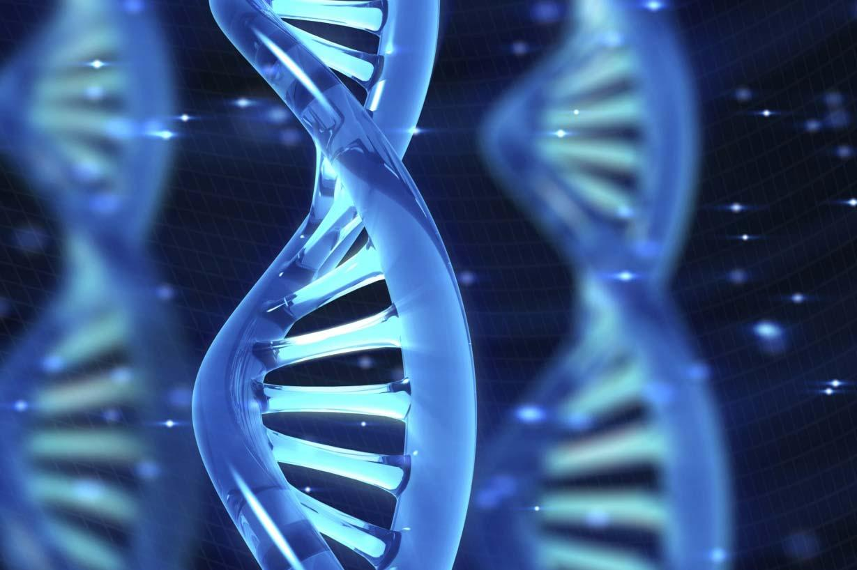 U.S. to Develop DNA Study of One Million People