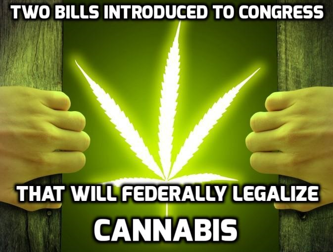 Two Bills To Federally Legalize Marijuana Were Just Introduced In Congress