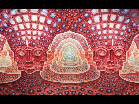 What World Do We Enter Under DMT and Ayahuasca