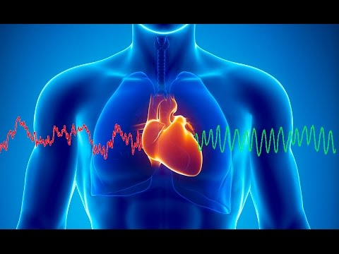 Heart Science How To Unlock The True Potential Of The Heart