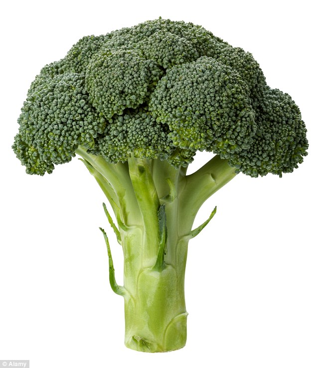 "Compound in broccoli found to ""stop growth of tumors"""