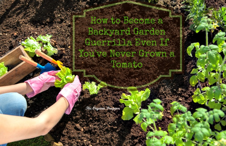 How to Become a Backyard Garden Guerrilla Even If You've Never Grown a Tomato