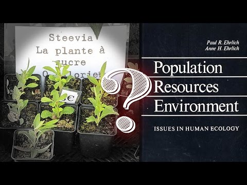 Sweetener Stevia Was Once Hailed As An Anti-Fertility Agent for Population Reduction