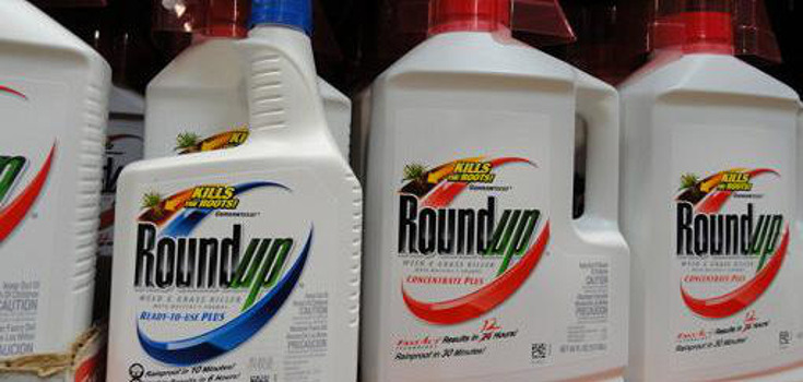 Victory: German Retail Giant Removes Glyphosate from 350 Stores