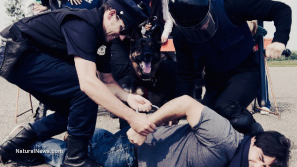 Cops-Police-Arresting