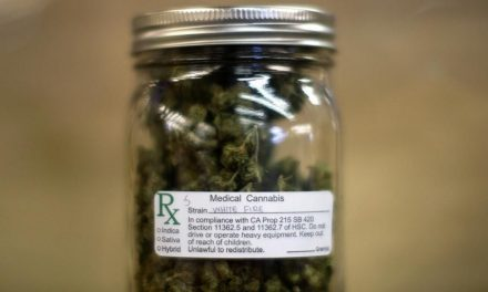 Painkiller deaths drop by 25% in states with legalized medical marijuana