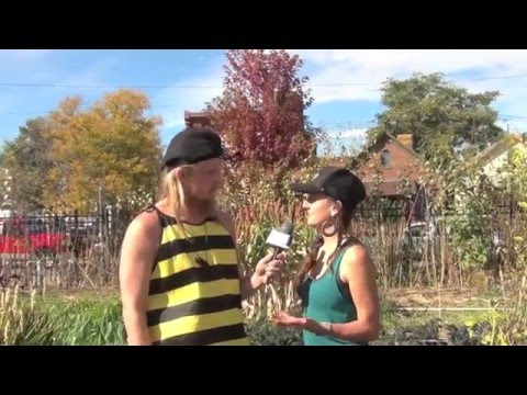 WRC Denver interviews Ayla Nereo at Permaculture Action Day