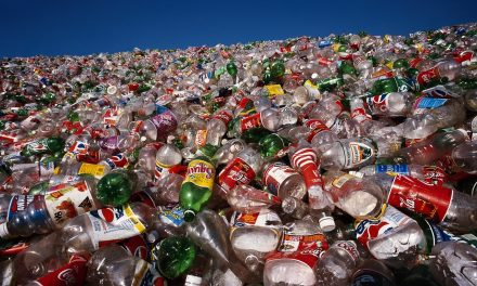 Scientists just discovered a plastic-eating bacteria that could revolutionize recycling