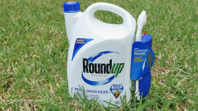 """Class action lawsuit accuses Monsanto of falsely advertising the """"safety"""" of glyphosate"""