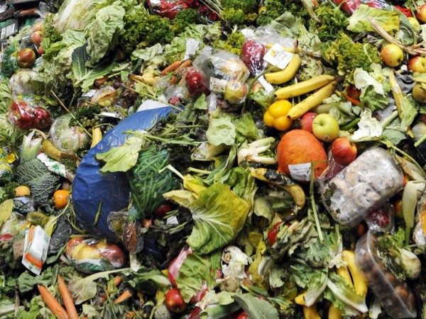 web-food-waste-getty