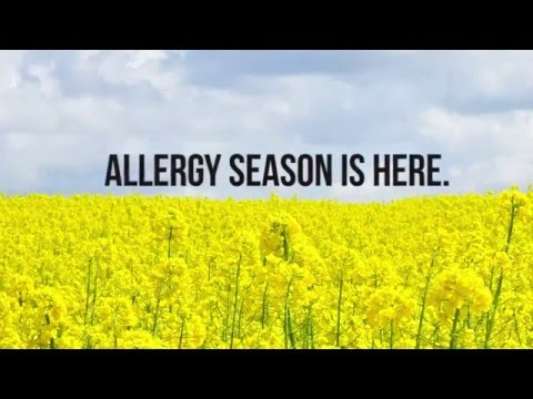 Allergy Medicine Actually Shrinks Your Brain!