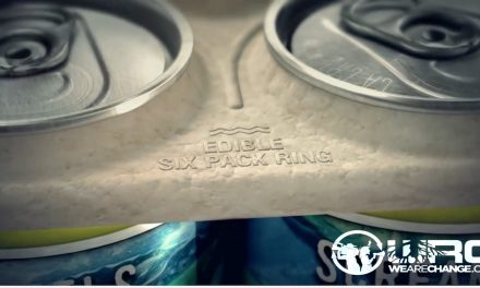 Beer Company Creates Edible Six-Pack Rings to Save Ocean