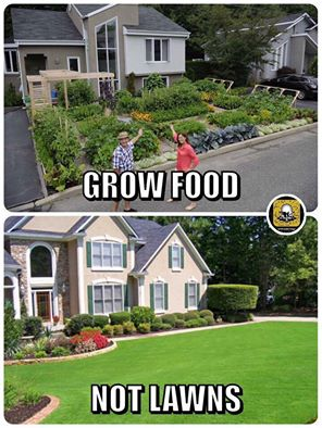 grow food not lawns