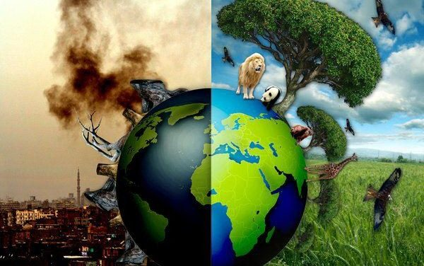 Global Extinction: Unsustainable Industrial Civilization
