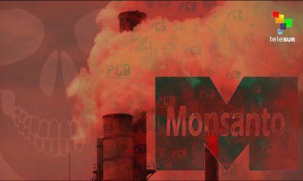 Abby Martin: Monsanto, America's Monster