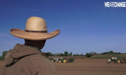 US Gov. Says Farmer Broke the Law By Plowing His Land