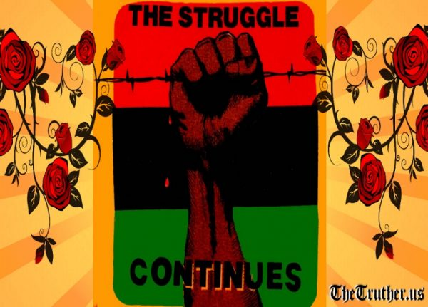 the struggle continues 17 pro black poems small