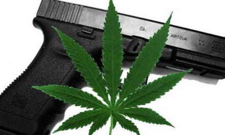 Federal Court: Medical Marijuana Cardholders Can't Own Guns