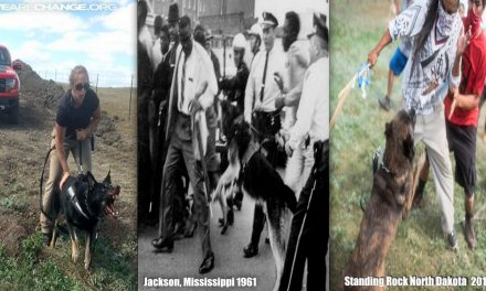 CENSORED NEWS: DOGS SICCED ON NATIVE AMERICAN PEACEFUL PROTESTORS