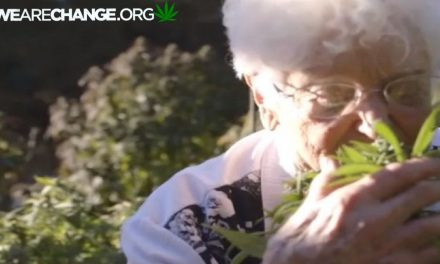 National Guard & State Police raid 81-year-old woman's home to seize single pot plant.