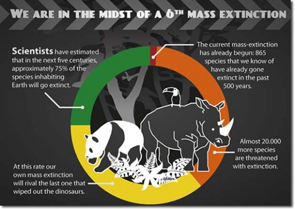 sixth_mass_extinction