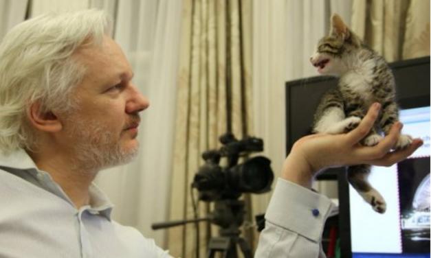 Julian Assange: Internet Restored at Ecuadorian Embassy