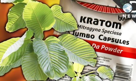 Kratom: Deadly Drug or Life-Saving Medicine?