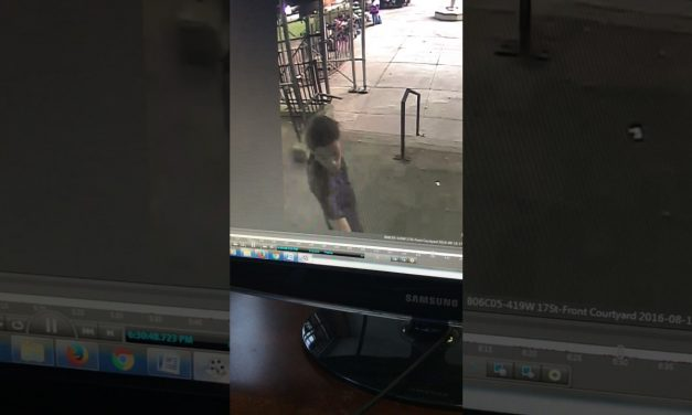 Innocent Kid Suffers Skull Fracture and Brain Damage Due to Overzealous and Negligent Undercover Police